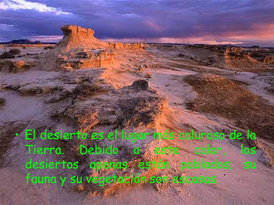 El desierto es el lugar más caluroso de la Tierra