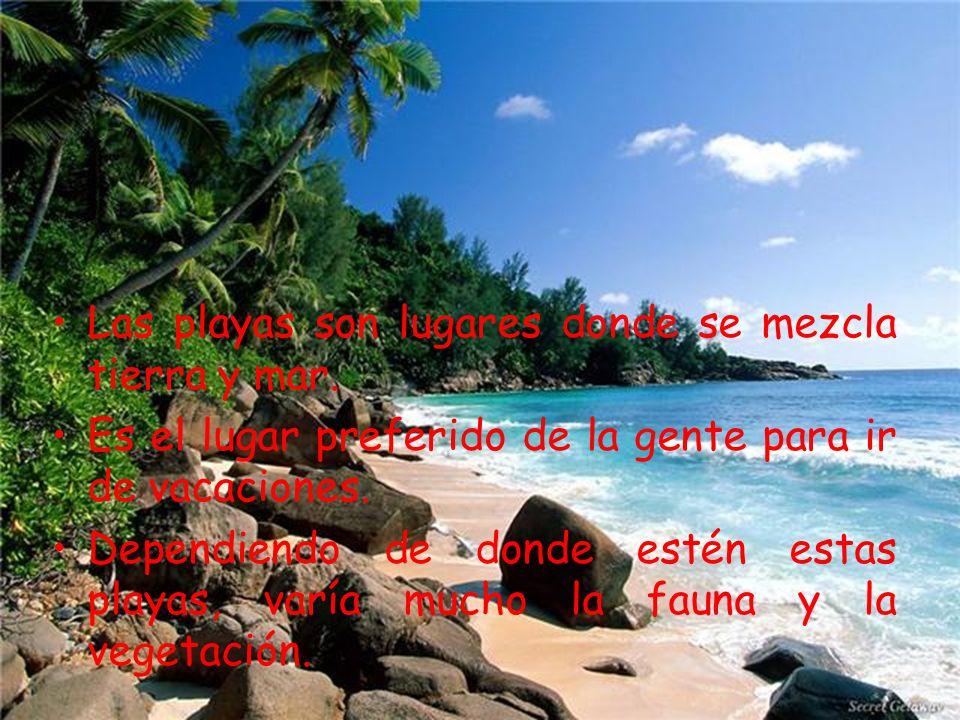 Las playas son lugares donde se mezcla tierra y mar.