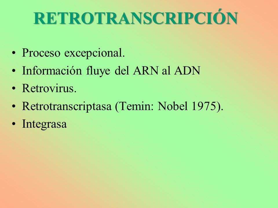 RETROTRANSCRIPCIÓN Proceso excepcional.