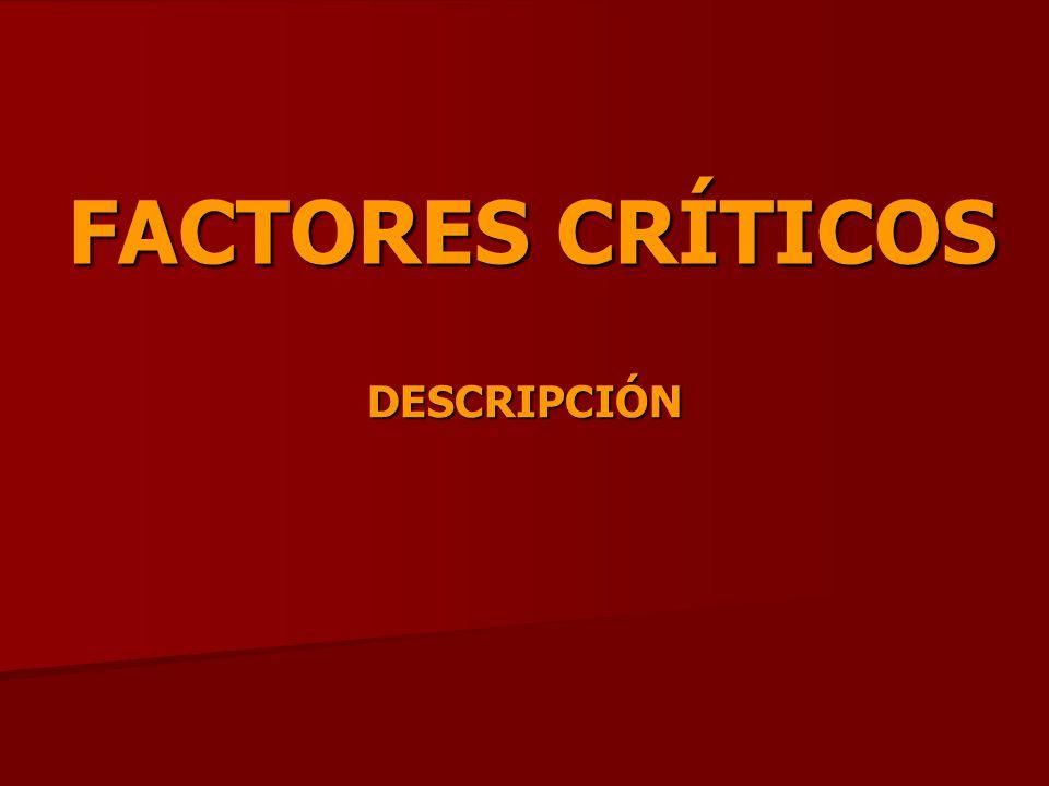 FACTORES CRÍTICOS DESCRIPCIÓN