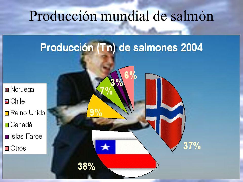 Producción mundial de salmón