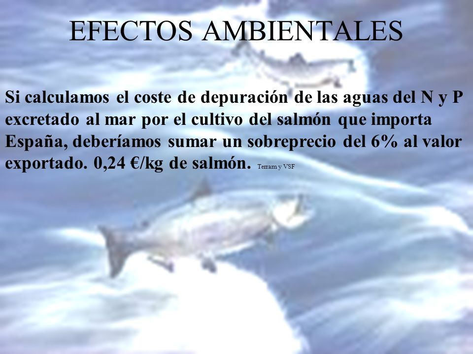 EFECTOS AMBIENTALES Si calculamos el coste de depuración de las aguas del N y P. excretado al mar por el cultivo del salmón que importa.