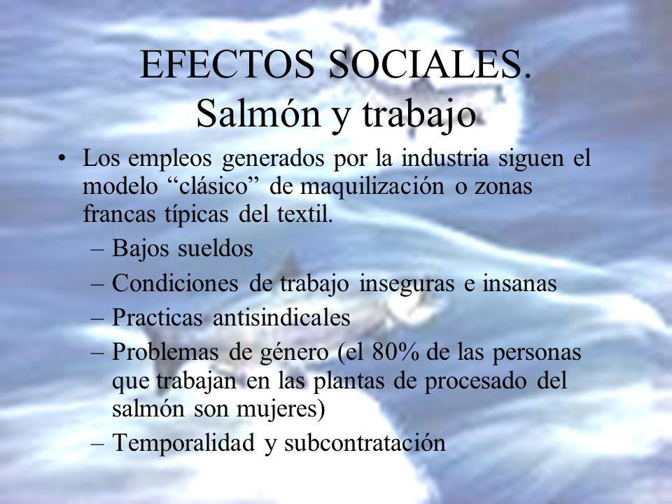 EFECTOS SOCIALES. Salmón y trabajo