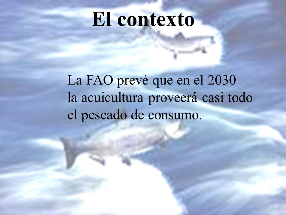 El contexto La FAO prevé que en el 2030