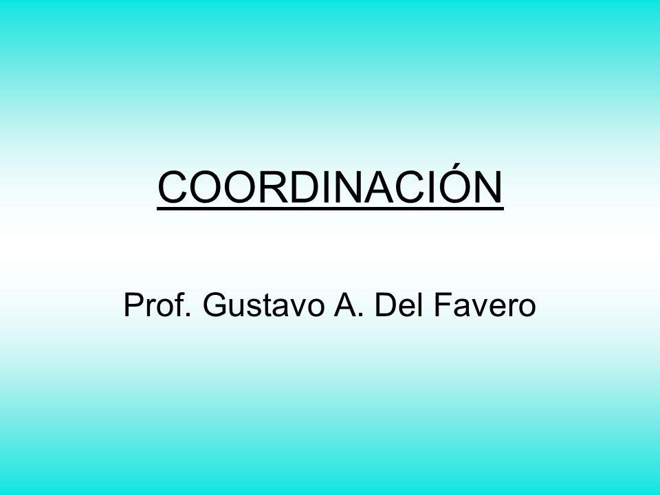 Prof. Gustavo A. Del Favero