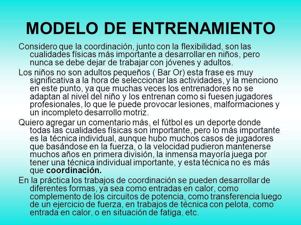 MODELO DE ENTRENAMIENTO