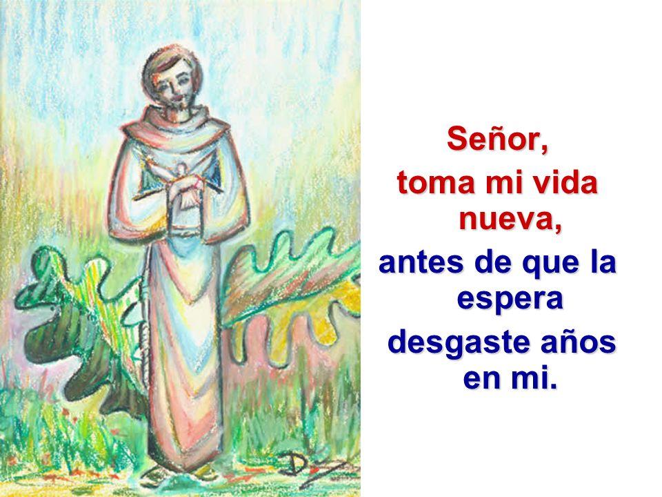 Señor, toma mi vida nueva, antes de que la espera desgaste años en mi.