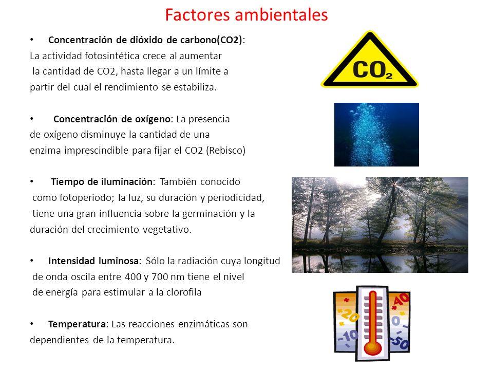 Factores ambientales Concentración de dióxido de carbono(CO2):