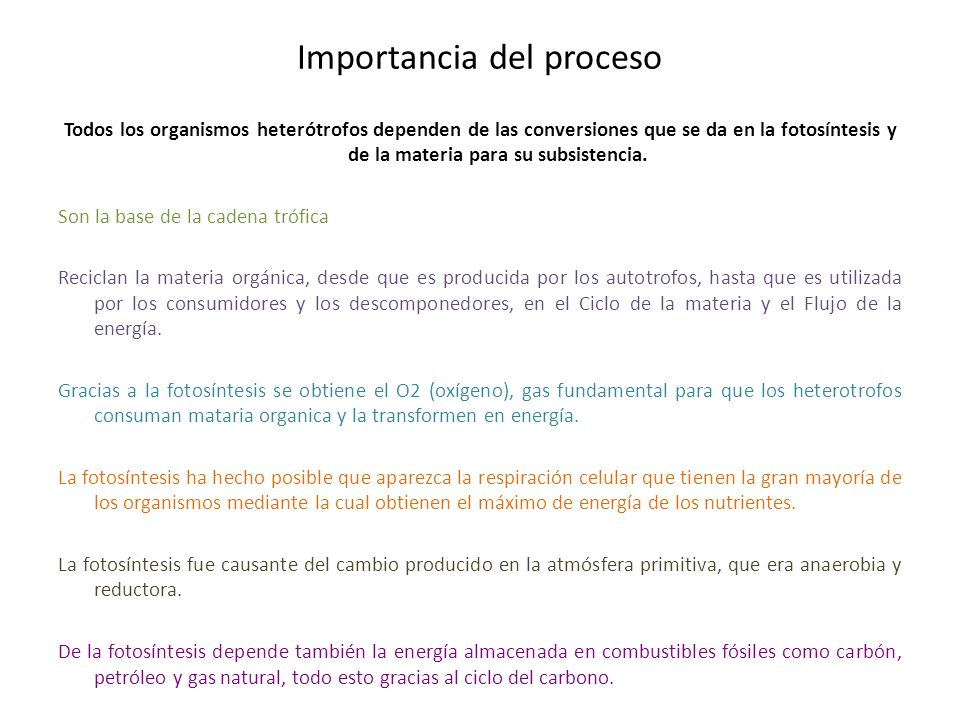 Importancia del proceso