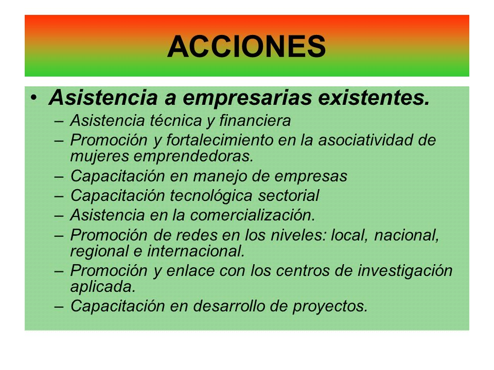 ACCIONES Asistencia a empresarias existentes.