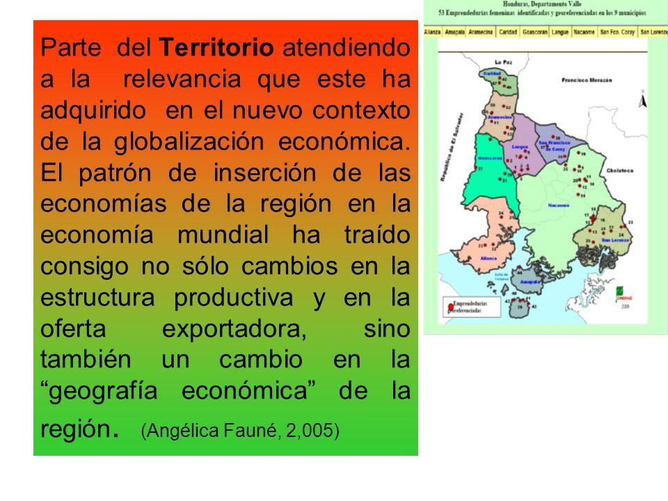 Parte del Territorio atendiendo a la relevancia que este ha adquirido en el nuevo contexto de la globalización económica.