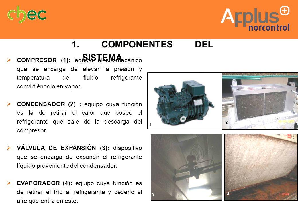 1. COMPONENTES DEL SISTEMA