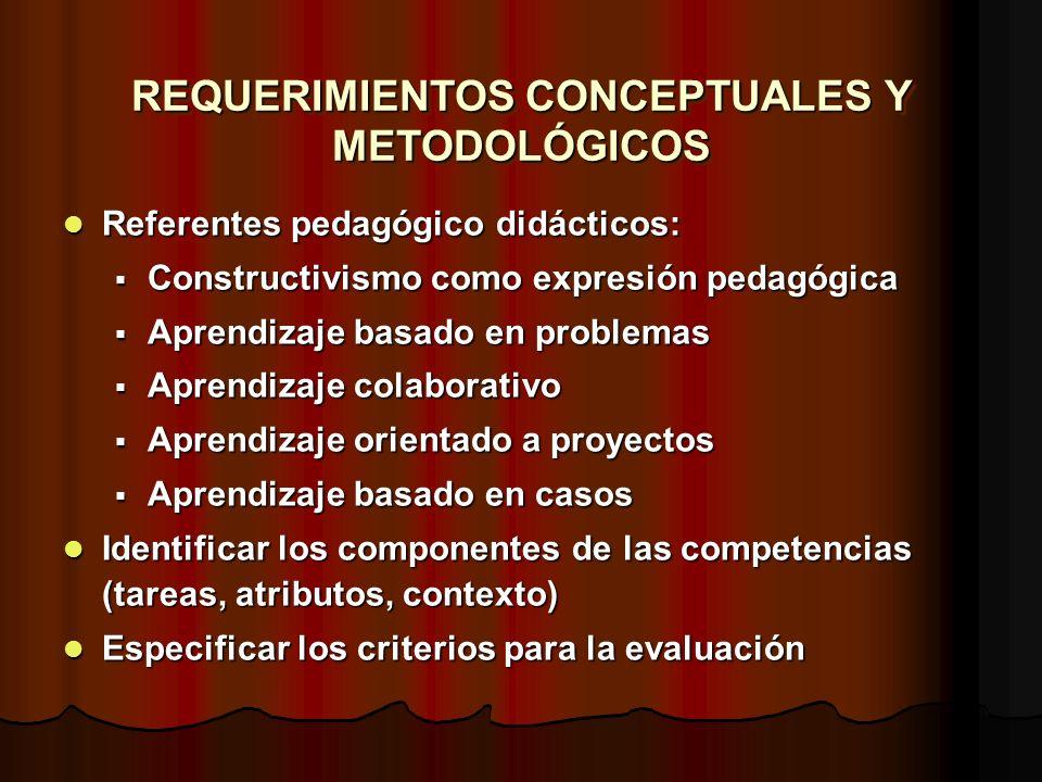 REQUERIMIENTOS CONCEPTUALES Y METODOLÓGICOS