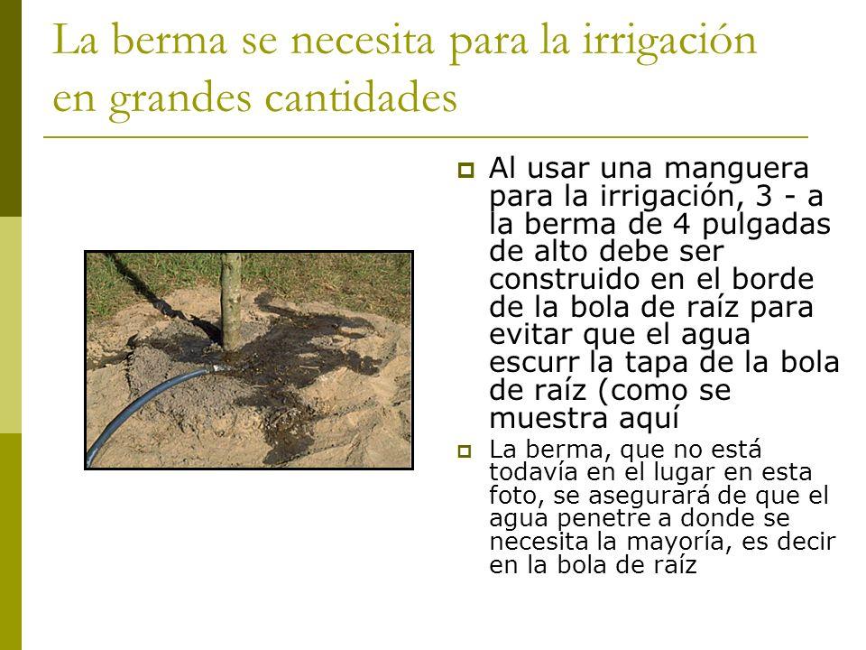 La berma se necesita para la irrigación en grandes cantidades