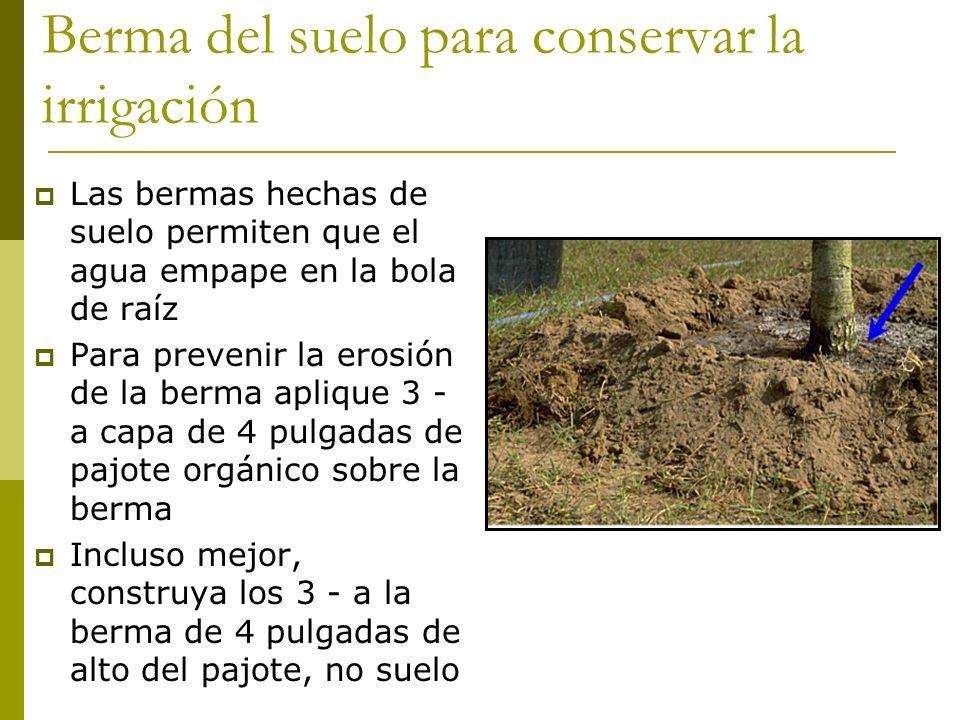 Berma del suelo para conservar la irrigación
