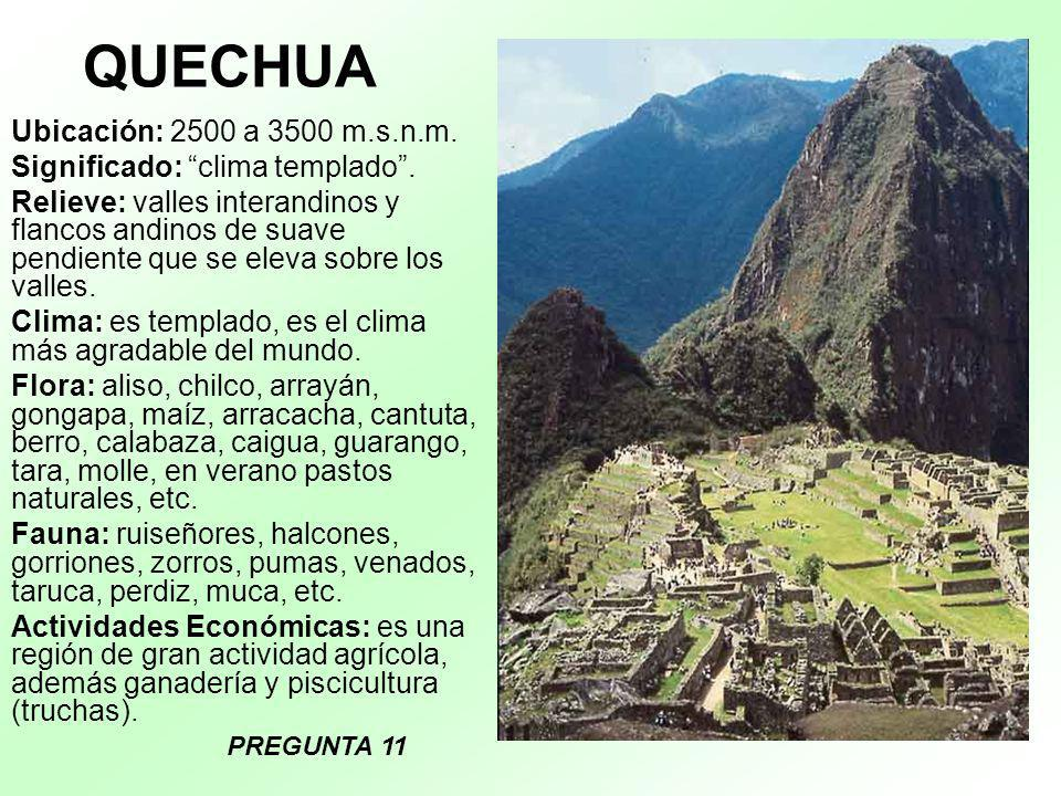 QUECHUA Ubicación: 2500 a 3500 m.s.n.m. Significado: clima templado .