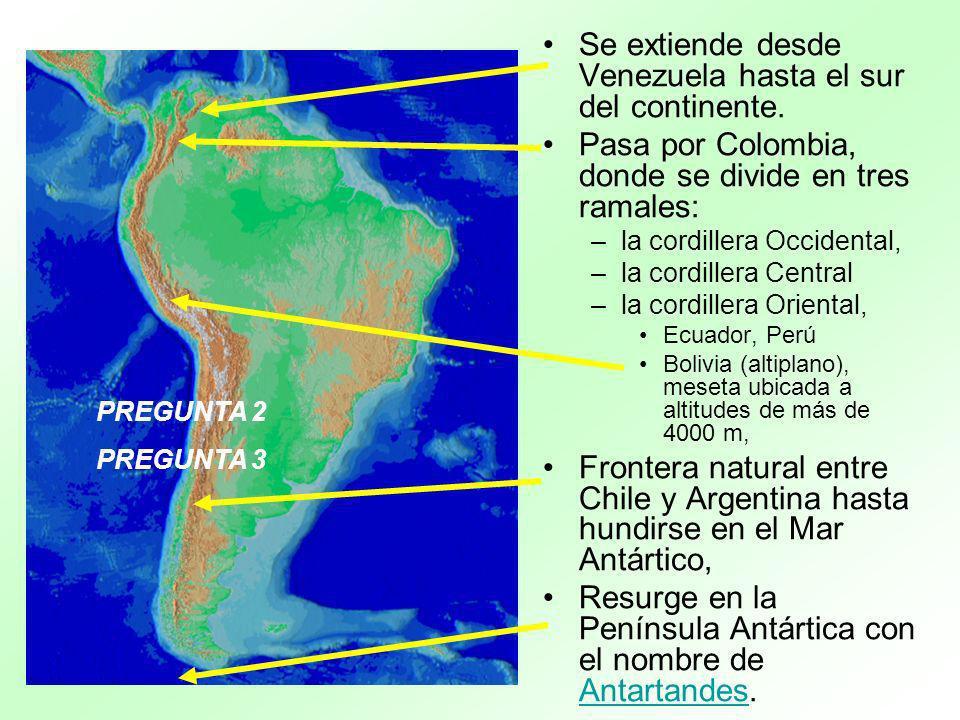 Se extiende desde Venezuela hasta el sur del continente.