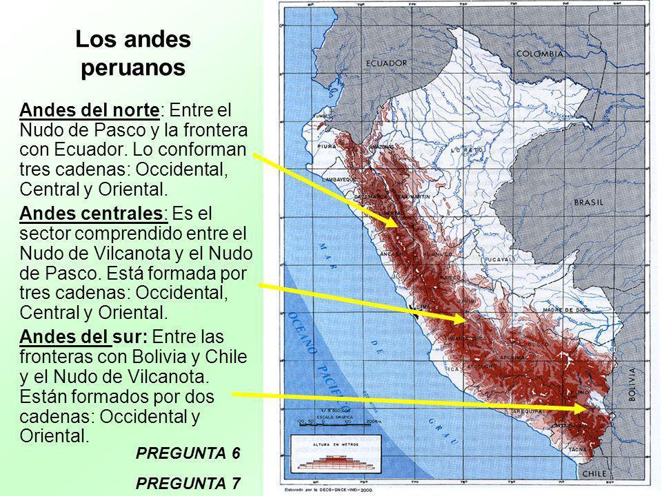 Los andes peruanos Andes del norte: Entre el Nudo de Pasco y la frontera con Ecuador. Lo conforman tres cadenas: Occidental, Central y Oriental.