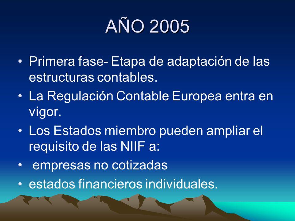 AÑO 2005Primera fase- Etapa de adaptación de las estructuras contables. La Regulación Contable Europea entra en vigor.