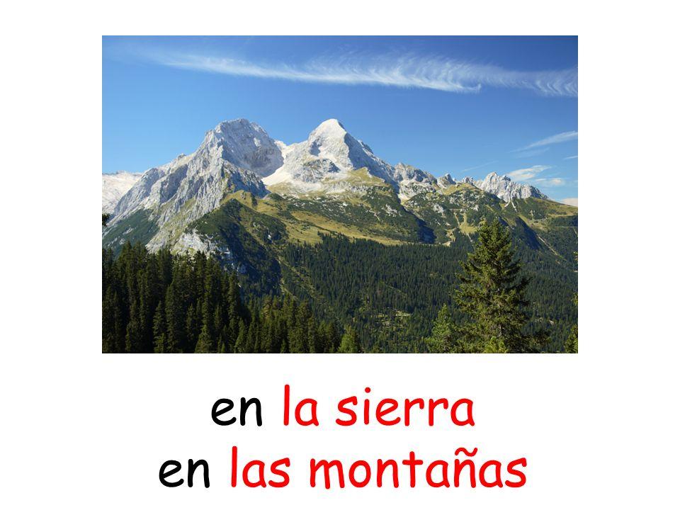 en la sierra en las montañas