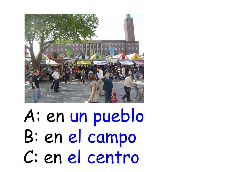 A: en un pueblo B: en el campo C: en el centro