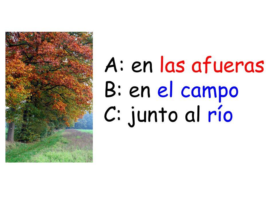 A: en las afueras B: en el campo C: junto al río