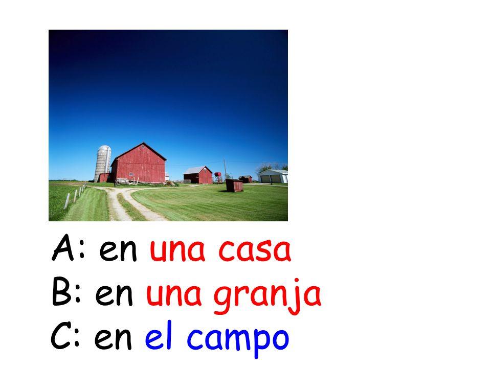 A: en una casa B: en una granja C: en el campo