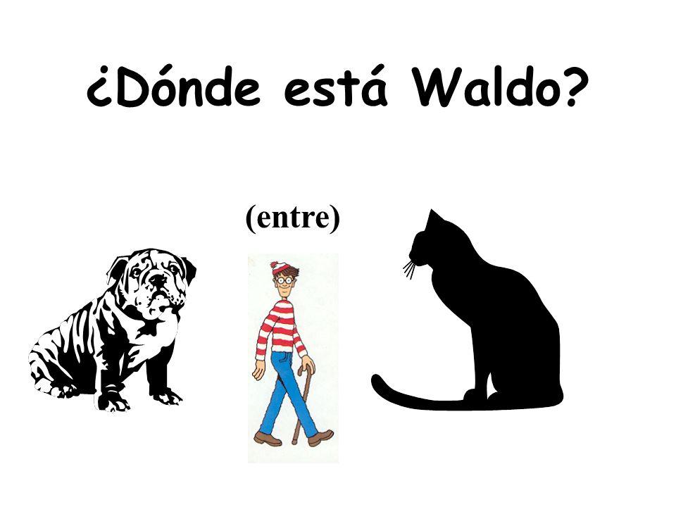 ¿Dónde está Waldo (entre)
