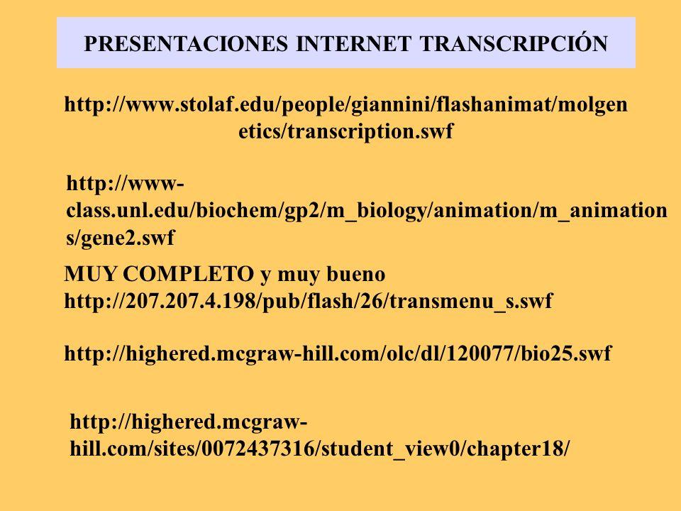 PRESENTACIONES INTERNET TRANSCRIPCIÓN