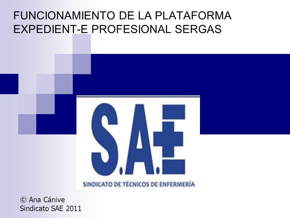FUNCIONAMIENTO DE LA PLATAFORMA EXPEDIENT-E PROFESIONAL SERGAS