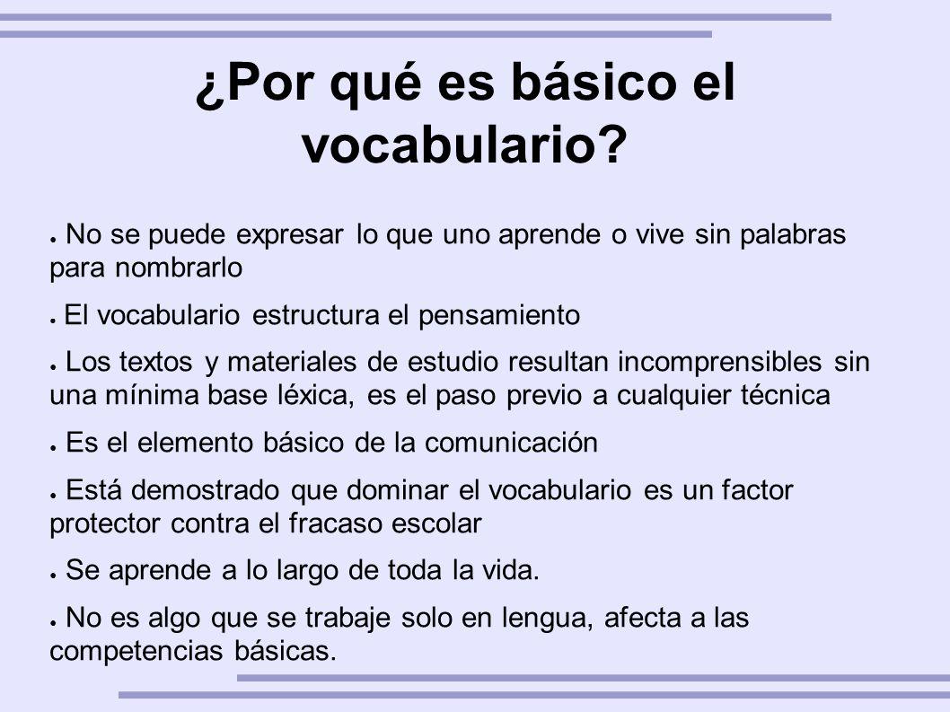¿Por qué es básico el vocabulario