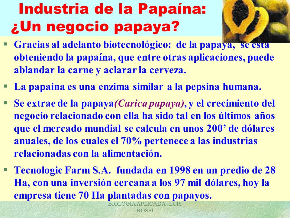 Industria de la Papaína: ¿Un negocio papaya