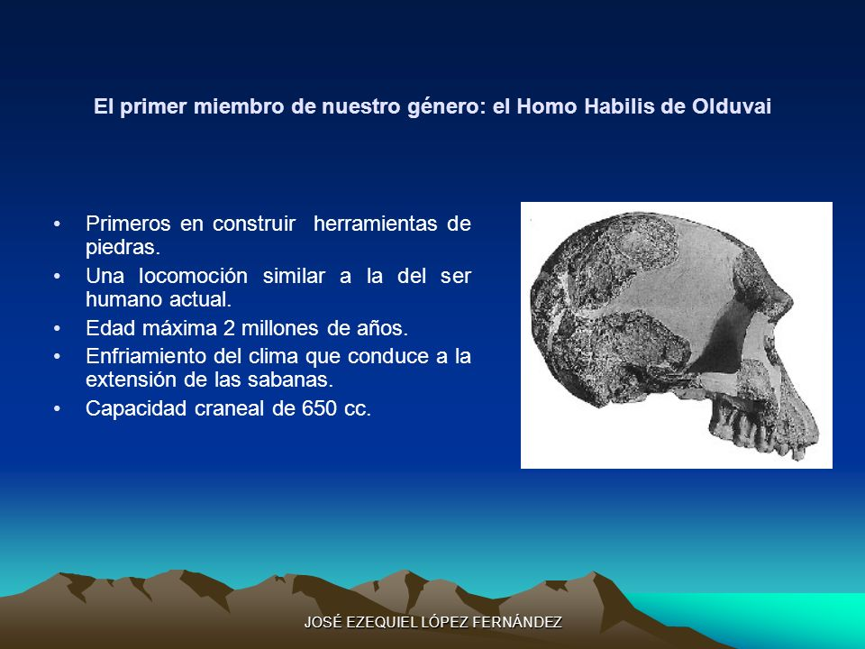El primer miembro de nuestro género: el Homo Habilis de Olduvai