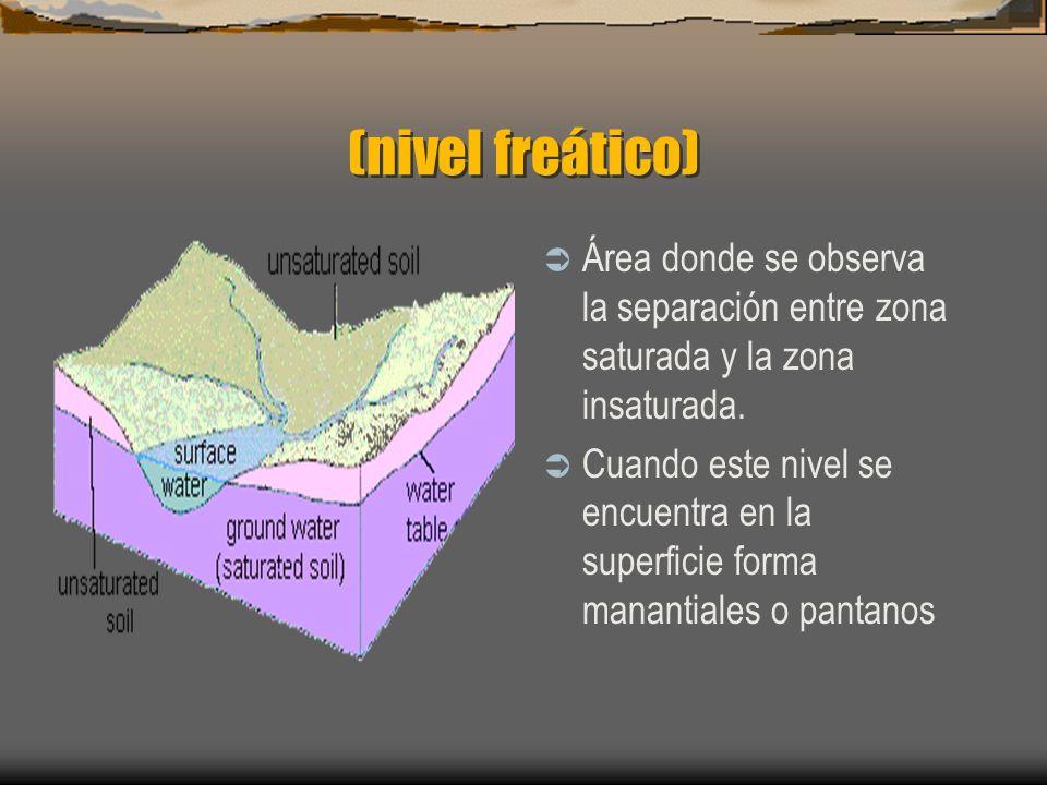 (nivel freático) Área donde se observa la separación entre zona saturada y la zona insaturada.