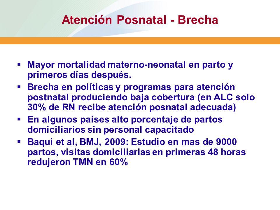 Atención Posnatal - Brecha
