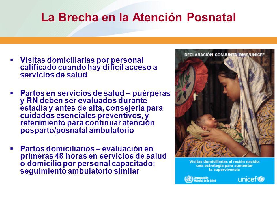 La Brecha en la Atención Posnatal