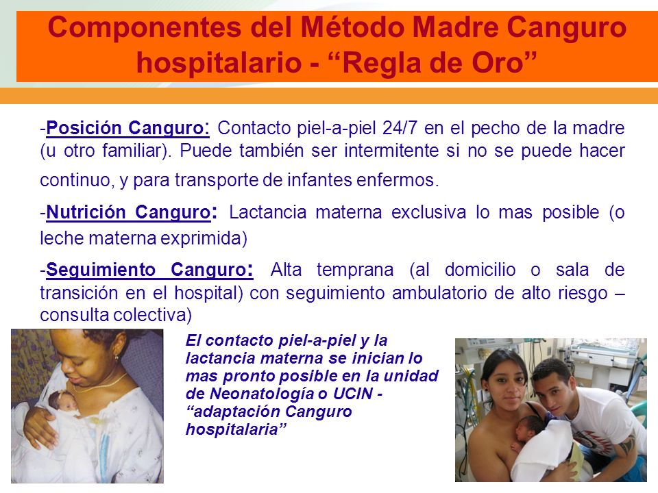 Componentes del Método Madre Canguro hospitalario - Regla de Oro