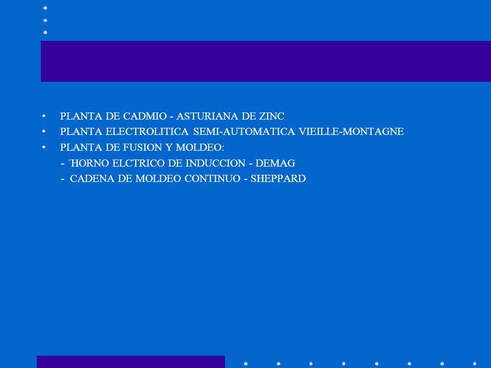 PLANTA DE CADMIO - ASTURIANA DE ZINC