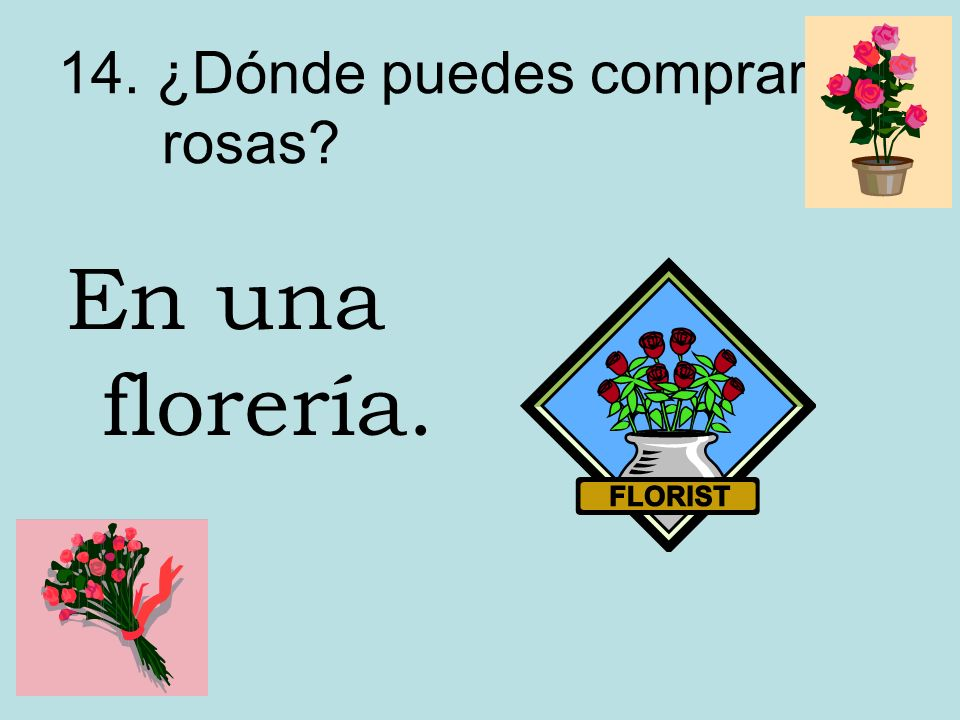 14. ¿Dónde puedes comprar rosas