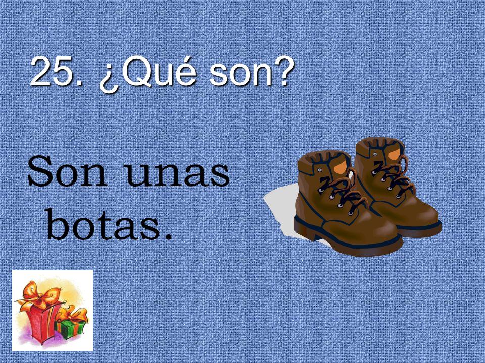 25. ¿Qué son Son unas botas.