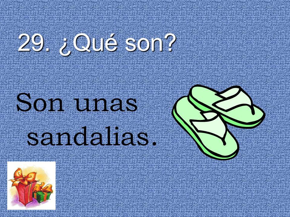 29. ¿Qué son Son unas sandalias.