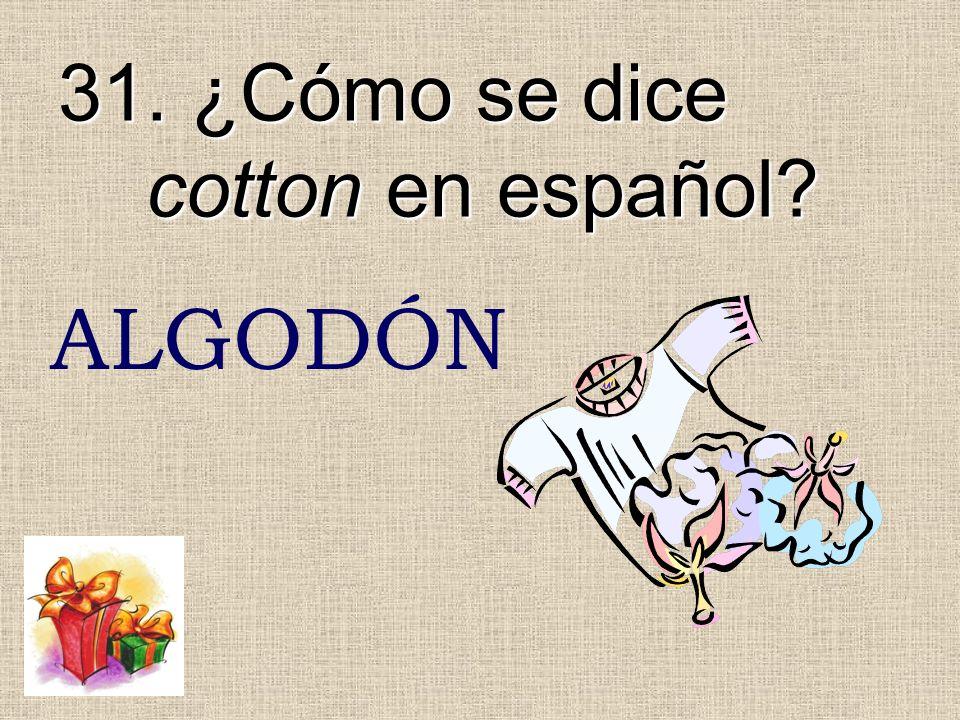 31. ¿Cómo se dice cotton en español