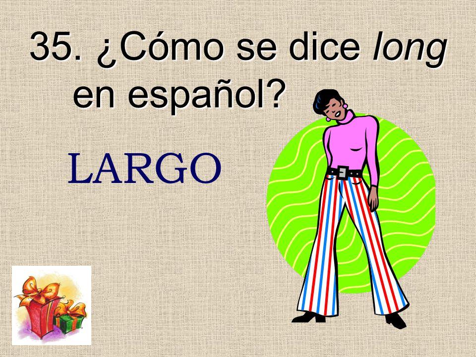 35. ¿Cómo se dice long en español