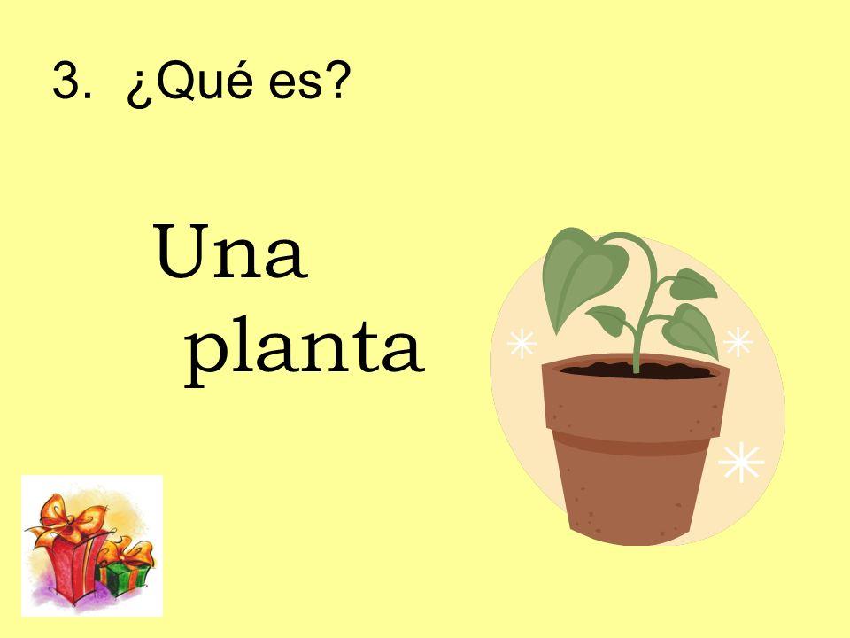 3. ¿Qué es Una planta