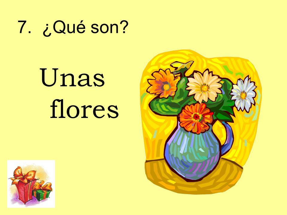 7. ¿Qué son Unas flores