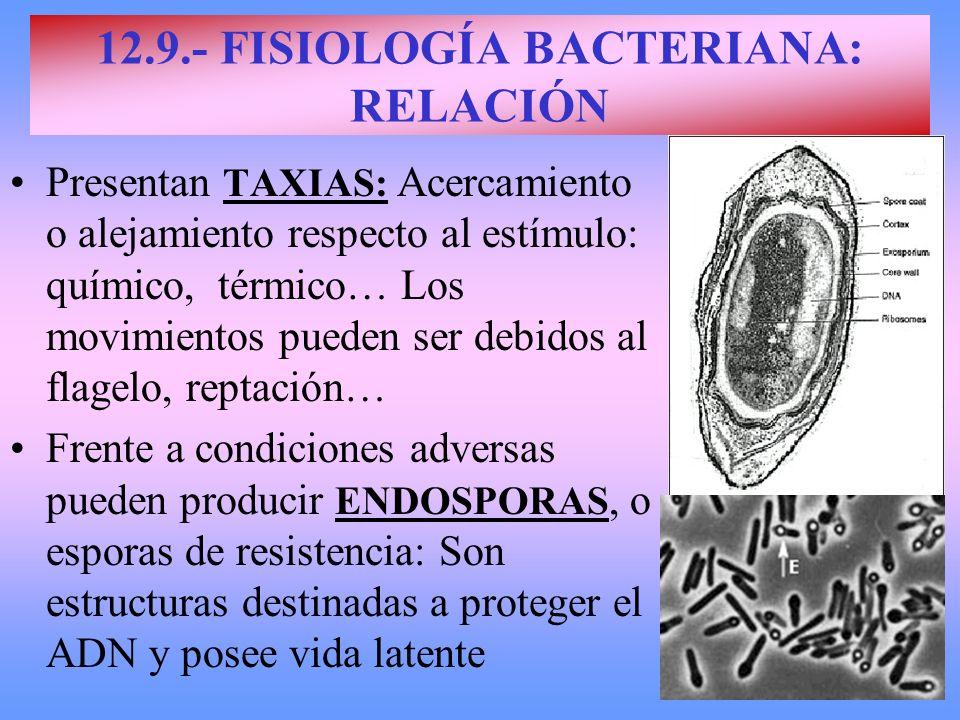 12.9.- FISIOLOGÍA BACTERIANA: RELACIÓN