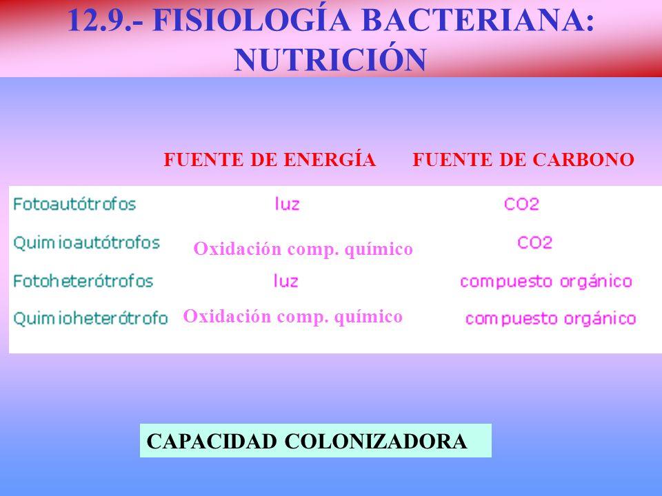 12.9.- FISIOLOGÍA BACTERIANA: NUTRICIÓN