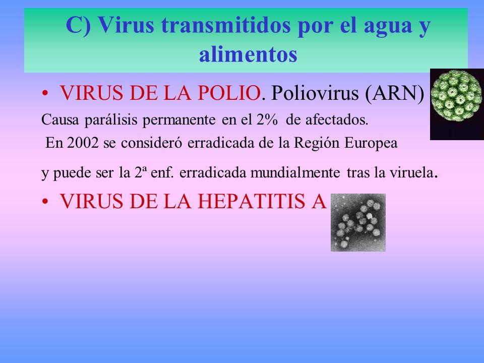 C) Virus transmitidos por el agua y alimentos