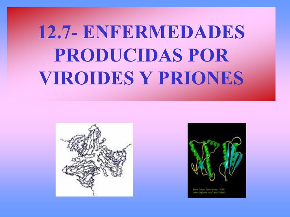 12.7- ENFERMEDADES PRODUCIDAS POR VIROIDES Y PRIONES