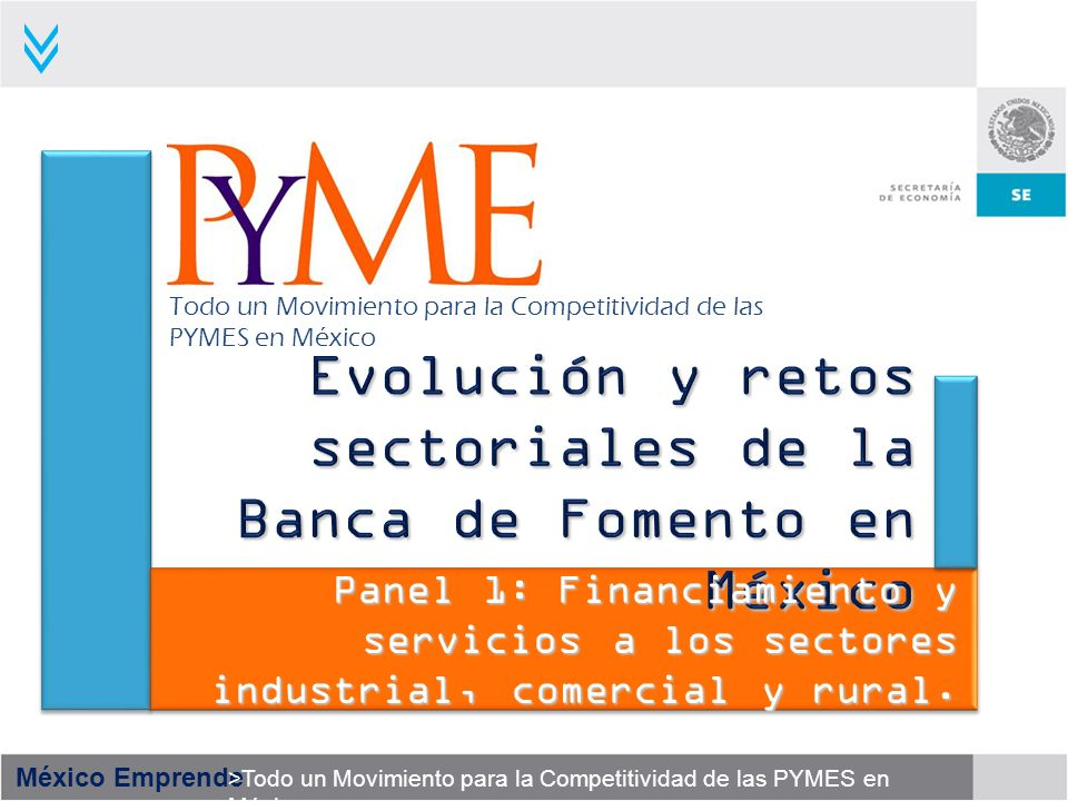 Evolución y retos sectoriales de la Banca de Fomento en México